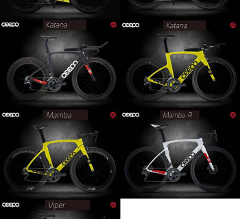CEEPO Triathlon Bike